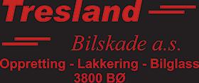 Tresland Bilskade Logo